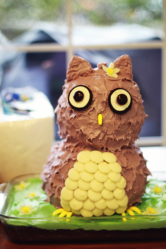 Beautiful Owl Cake