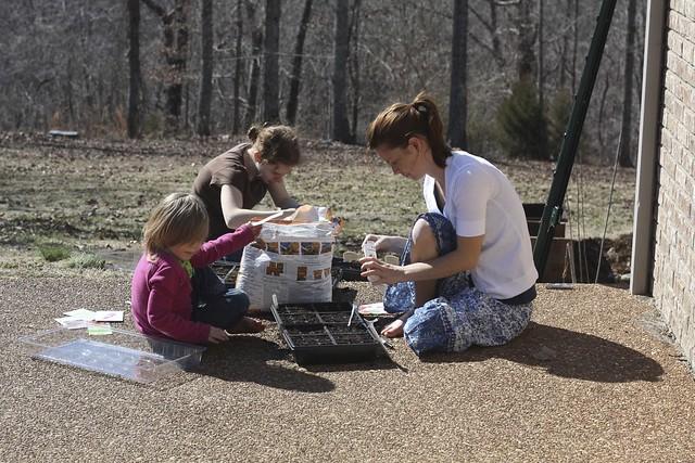 The Three Girls Working on Seedlings