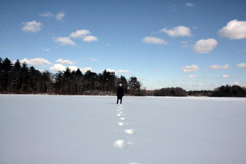 snowy pond, III