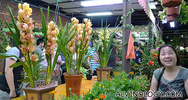 We spotted these very nice potted plants - they cost over $130 per pot