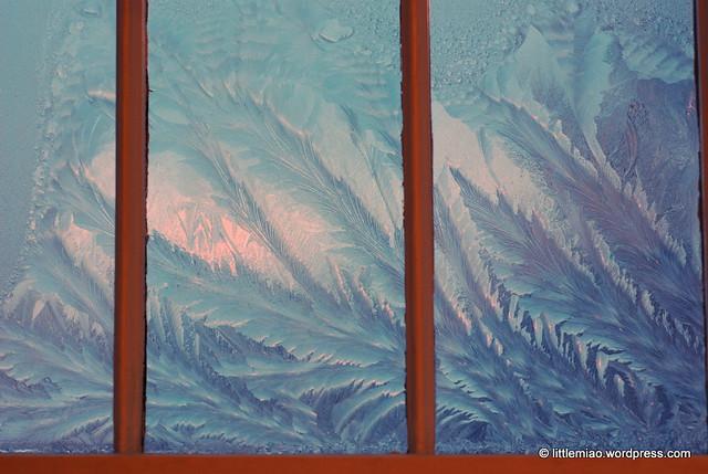 ice windows 2-2-2011 7-25-03 AM