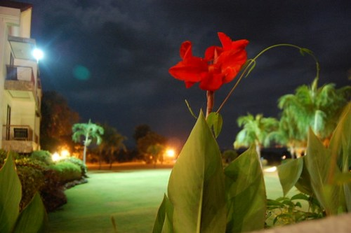 Thunderbird Resort Binangonan, Rizal, Philippines 41