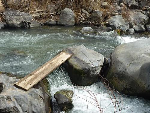 Wild Rivers 24