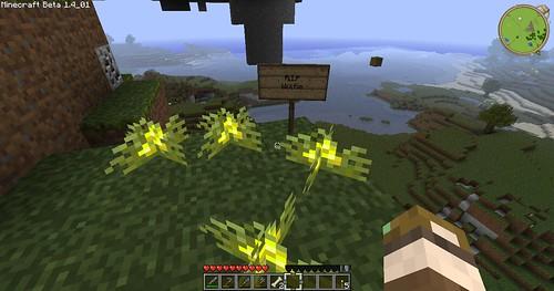 Minecraft - RIP Wolfie . . .