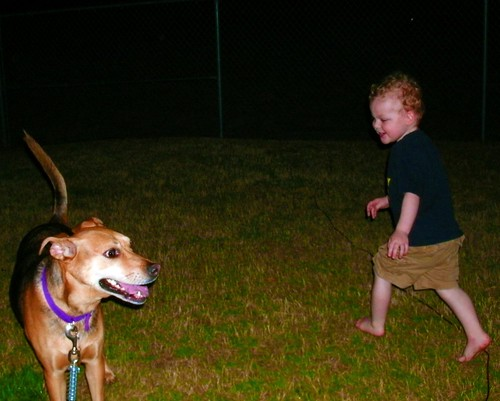 Playing Chase