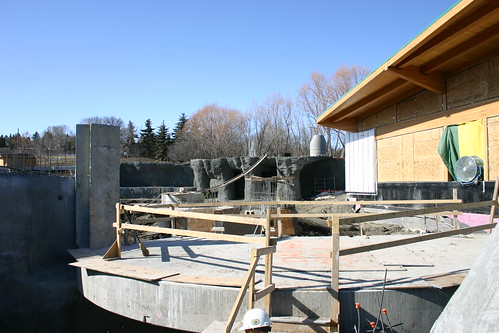 Valley Zoo Arctic Shores Construction