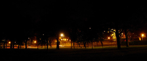 The-Meadows-at-Night