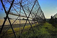 maledetto-muro