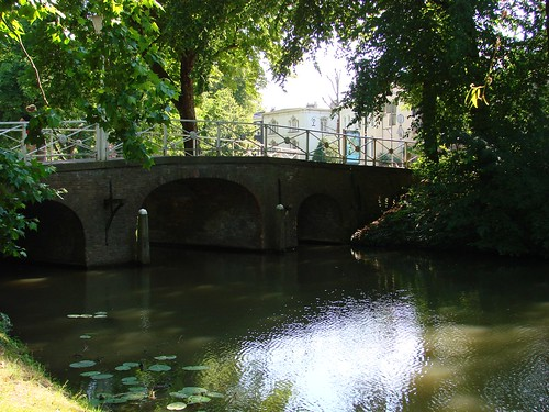 Bridge in the Shade