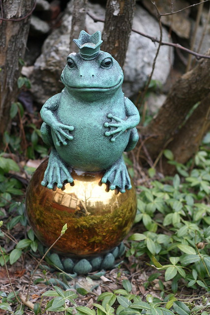 A frog or a prince?