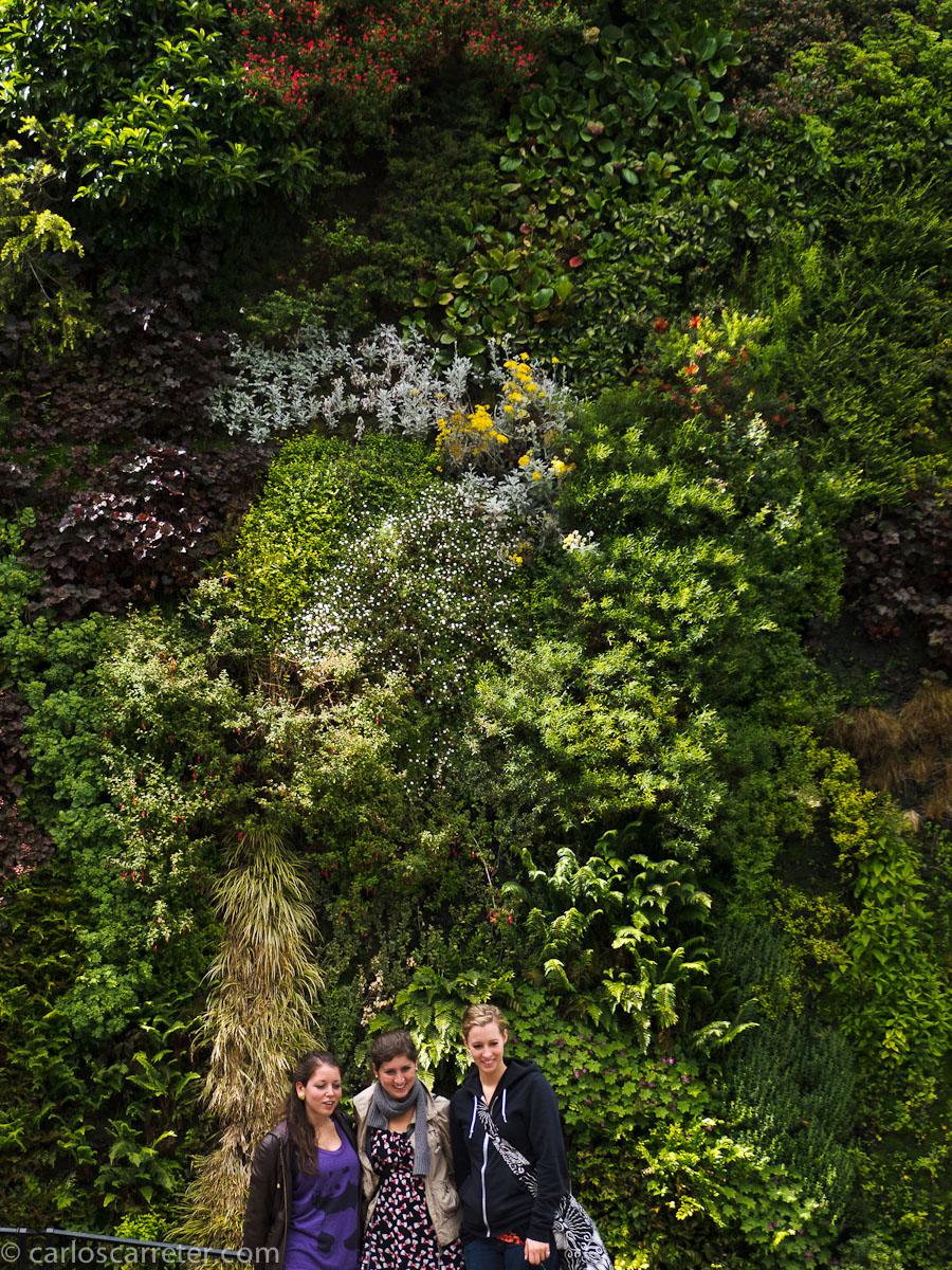 Jardín vertical - Caixaforum