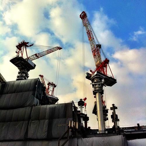 (^o^)ノ < おはよー! 久々登場のクレーンです。 #morning #crane