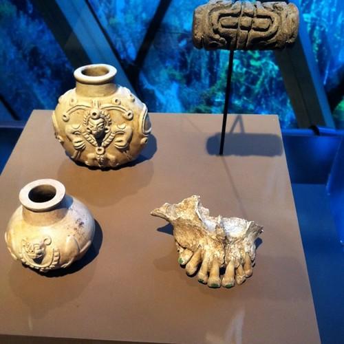 Incrustations de jade dans les machoires mayas