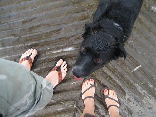 at the dock with Indie