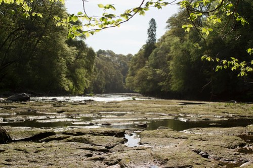 The River Ayr at Failford Gorge