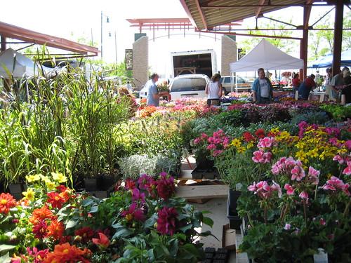WA farmer's market