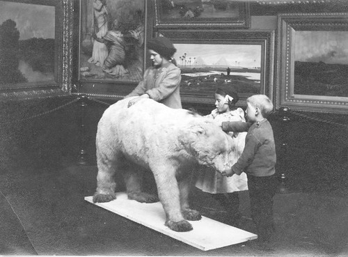 'Seeing' a Polar Bear  by TWAM - Tyne & Wear Archives & Museums