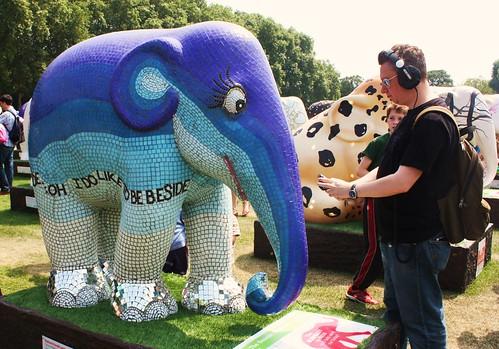 Kubella - The Seaside Elephant