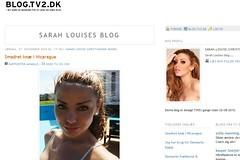 Sarah Luises blog