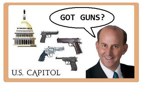 Guns in the Capitol
