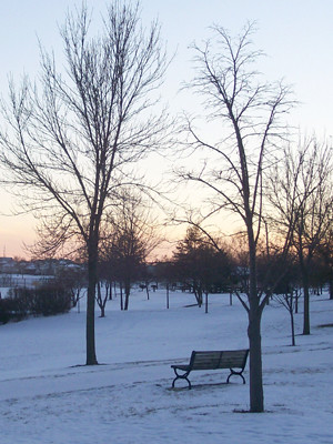20101217_winter_sunset_photo