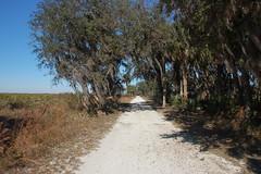 Kissimmee Prairie Trail