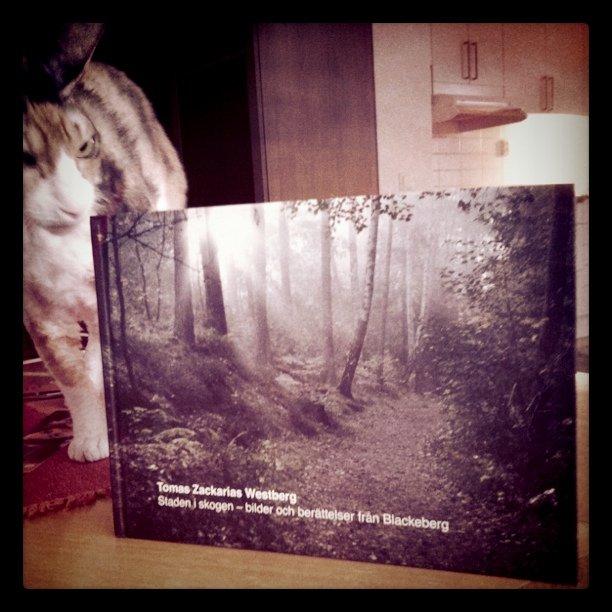 Här ska läsas! Vi har fått hem Tomas bok.