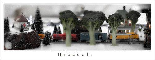 brocolliPanoSnoWflickr