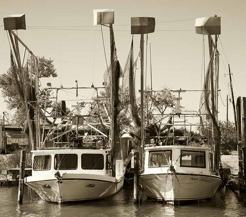shrimpboatsf
