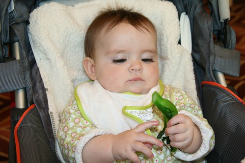 Sceptical about spinach
