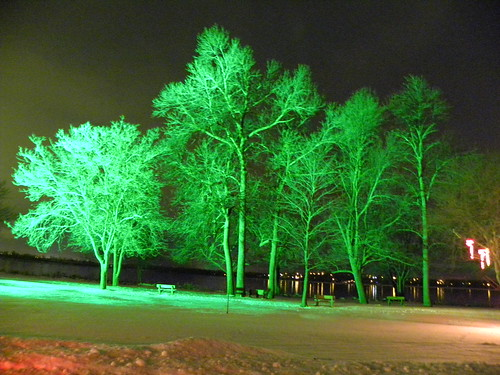 2011-01-05 064