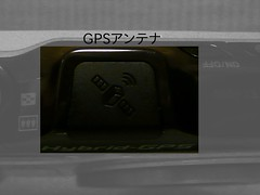 P1110479.JPG