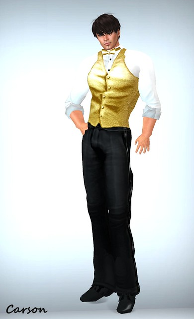 Just BECAUSE Persuasion Gold Tuxedo  Vest only