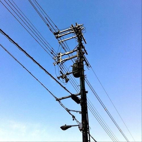 お昼~! 今日の大阪、いい天気です。電信柱萌え~!(^O^☆♪