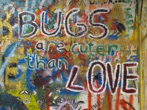 Bugs are Cuter than Love