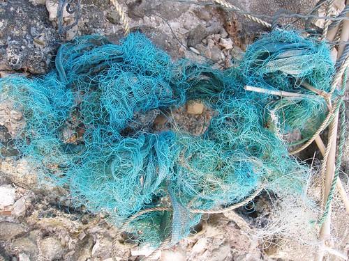 201102130489_turquoise-fishing-line