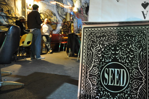 SEED January 2011: Smoke and Mirrors