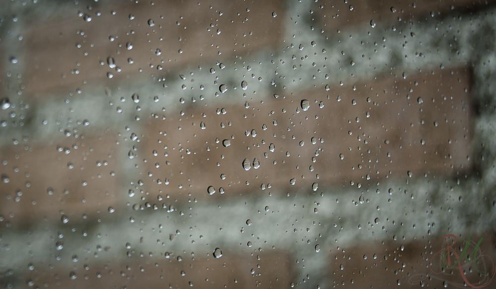 [8/365] Otro día de lluvia...