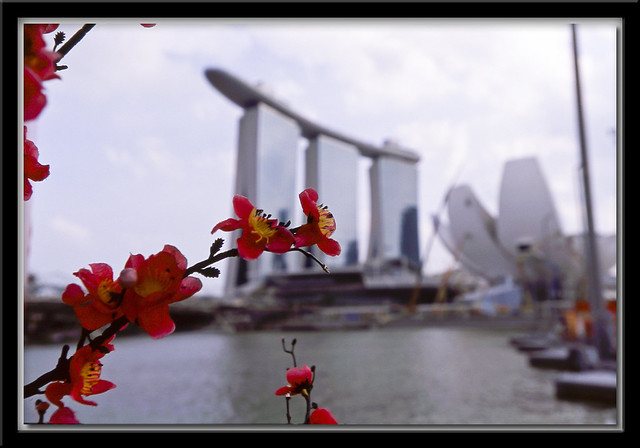 Marina Bay Sands with flowers