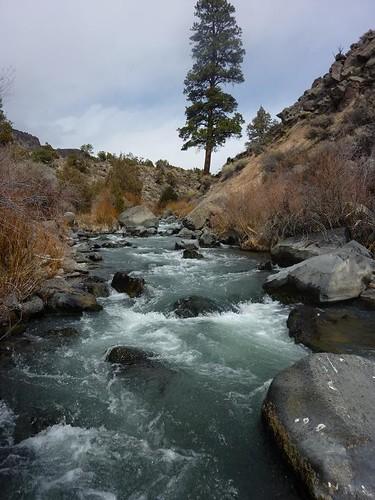 Wild Rivers 27
