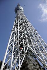 Sky tree,東京スカイツリー .日本