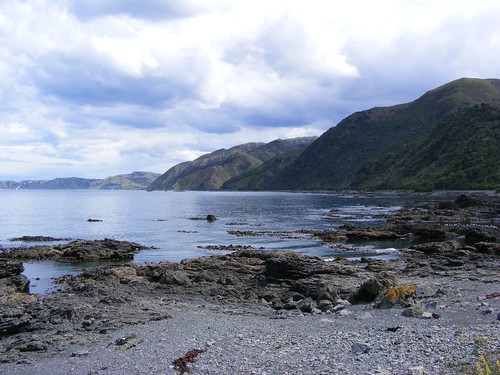 Picture from the Road to Kaikoura
