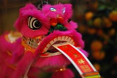 瑞狮呈祥 Happy Chinese New Year