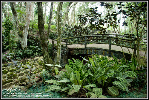 Davao Eden Nature Park 102 copy