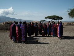 Ngorongoro Conservation Area - Tanzanie 2011 (33)