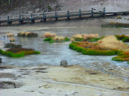 yellowstone9