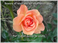 Beware of what you set your heart upon...For i...