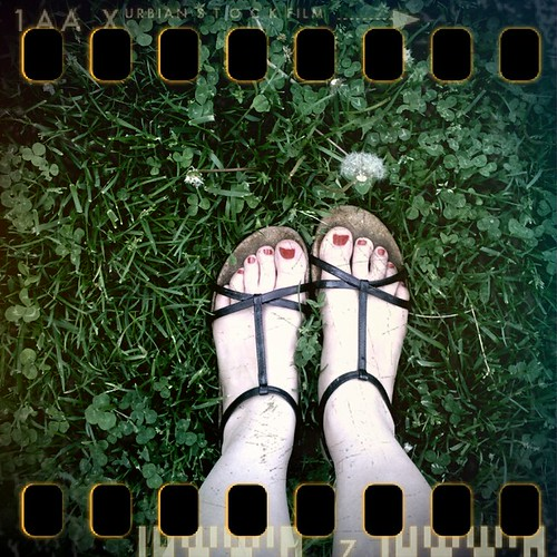 One Hundred Eighteen/ThreeSixtyFive: Spring Underfoot by Madame Meow
