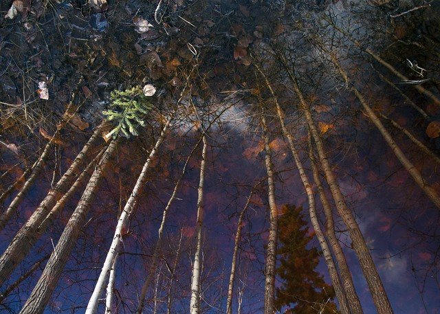 Reflected Grove Inversion
