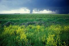 Nebraska tornado, May 24, 2004 (DI02257) Photo...
